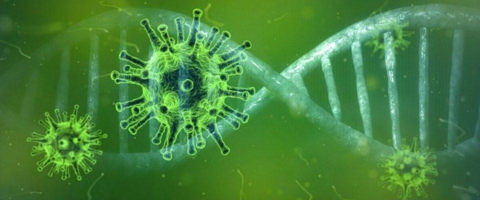 Posibles alternativas empresariales ante un supuesto de pandemia: el coronavirus